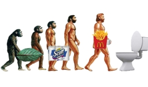 Evolution of toilet paper