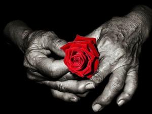 Rufus Valentine hands