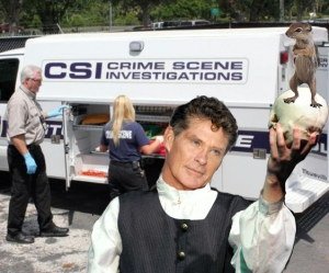 Crime_Scene_2011a copy