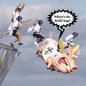Flugtag Pig